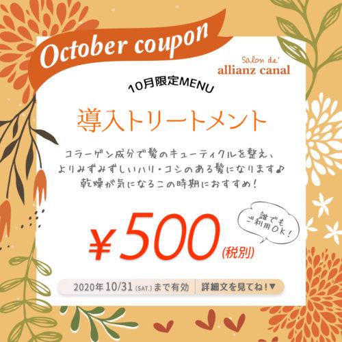 【10月限定クーポン】導入トリートメント¥500 イメージ