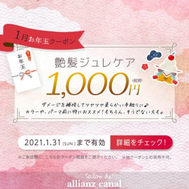 【1月限定お年玉クーポン】艶髪ジュレケア 1,000円(税別) イメージ