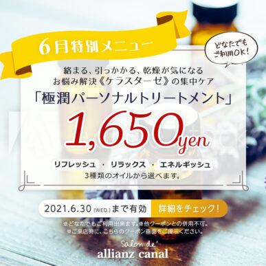 【6月限定メニュー】極潤パーソナルトリートメント 1,650円(税込) イメージ