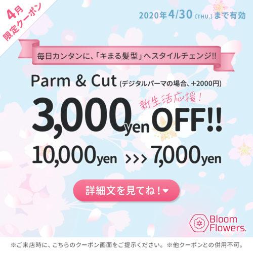 【4月限定クーポン】似合わせカット+パーマ 通常¥10,000円→¥7,000円 イメージ