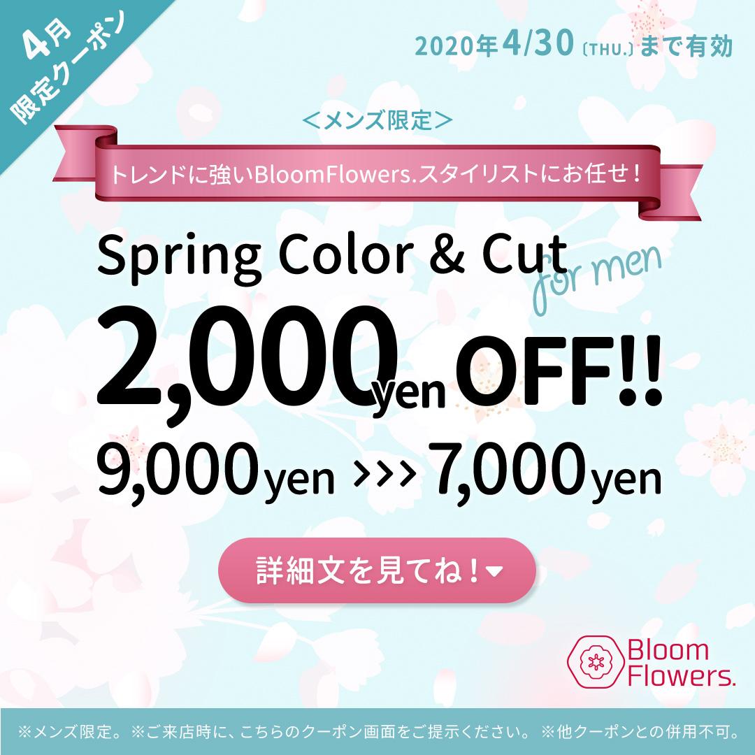 【4月メンズ限定クーポン】似合わせカット+Springカラー 通常¥9,000円→¥7,000円(税抜) イメージ
