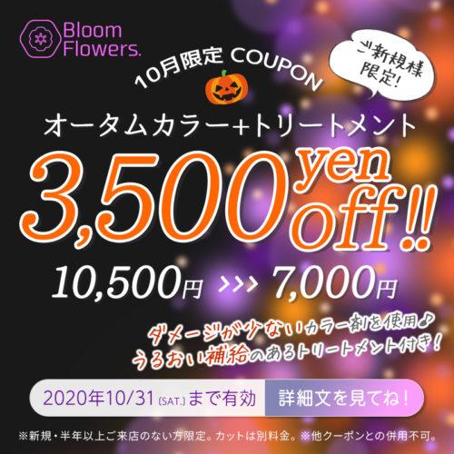 【10月限定クーポン】オータムカラー + トリートメント付 通常価格¥10,500→¥7,000(税別) イメージ