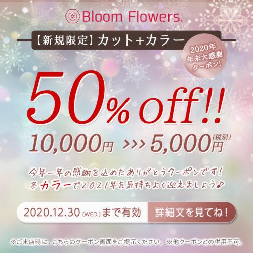 【年末大感謝クーポン】カット+カラー 通常価格10,000円→5,000円(税別) イメージ