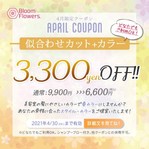 【4月限定クーポン】カット+カラー 通常¥9,900→¥6,600(税込) イメージ