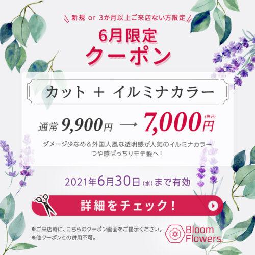 【6月限定クーポン】カット+イルミナカラー 通常9,900円→7,000円(税込) イメージ