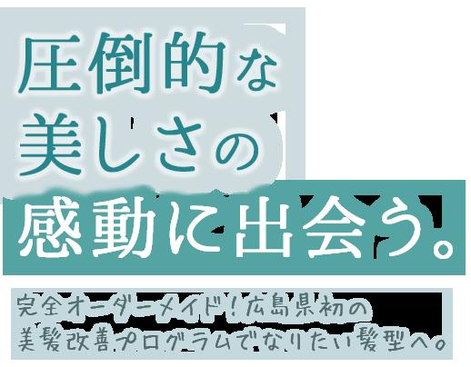 圧倒的な美しさの感動に出会う | 完全オーダーメイド!広島県初の美髪改善プログラムでなりたい髪型へ。